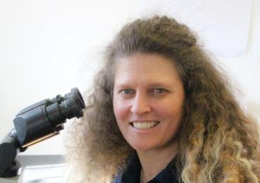 Dr. Kristen Todhunter