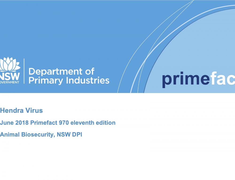 Hendra Virus Fact Sheet
